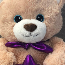 Buy a Super Bear to help The Starlight Foundation!